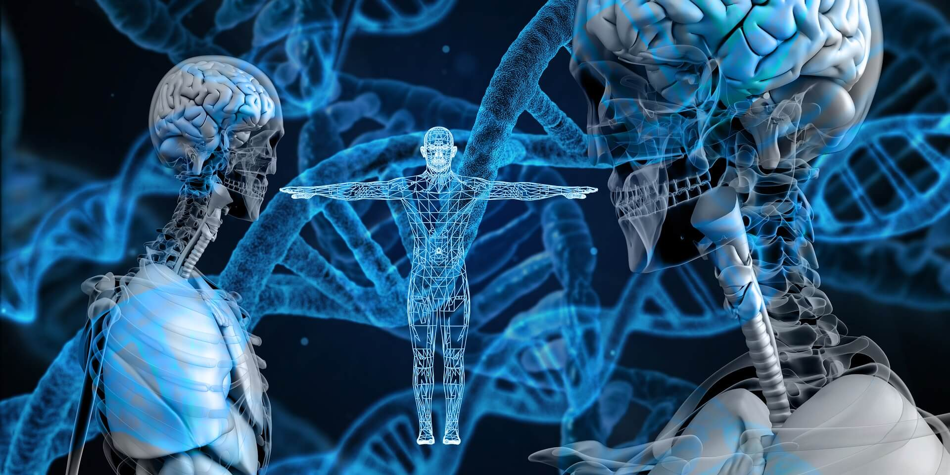 Genetics are the basis for our abilities and potential